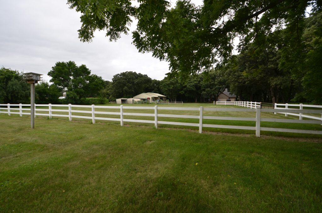 11. Back Pasture