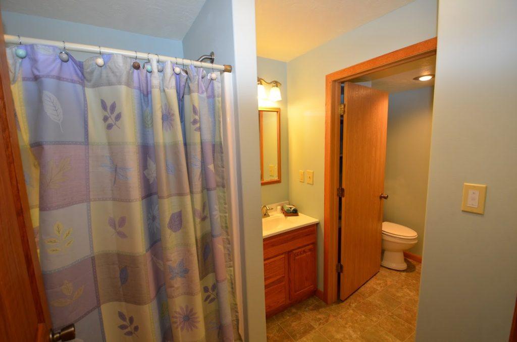 Lower Level Bath 3