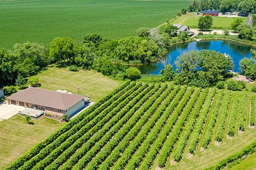 1790 510th St Winery_tn