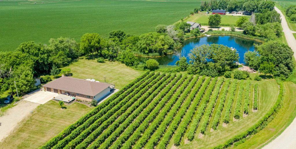 1790 510th St Photo 1 Winery
